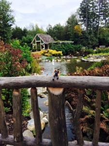 Botanical Gardens in Boothbay Harbor